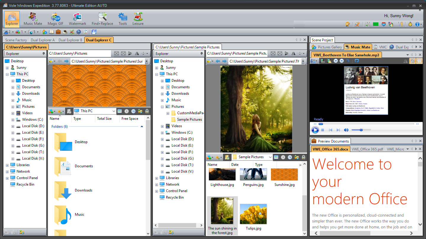 Vole Windows Expedition 3.93.9121 full